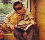 ler_gatos01